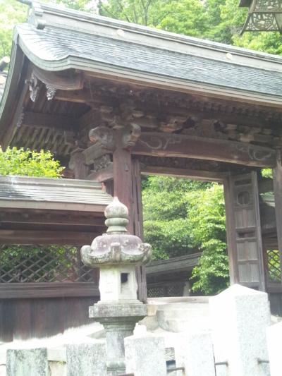 神様がいる雰囲気あるなぁ。多家神社(埃宮)の本殿