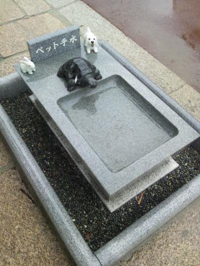 かわいい??ペット用の手水舎がある広島の邇保姫神社