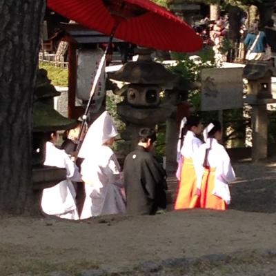 練り歩く花婿と花嫁(住吉大社の神社婚)